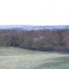 Ecclesall Woods.