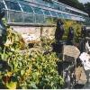 Winter Gardens, Duthie Park.