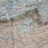 Detail of stone at Calanais 3