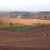 View near Shillingford Abbot