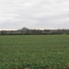 fields off the A5