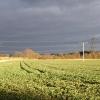 Farmland at East Hagbourne