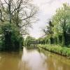 Llangollen Canal  north of Springhill Bridge