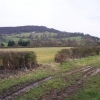 The Fields of Little Witcombe