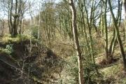 Little Hawksworth Wood, Horsforth