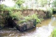 River Claw below Sellick