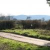 Cullompton: lane at Haywood Cross