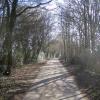 Bovingdon: Holly Hedges Lane