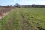 Farmland near Ferndene, Hadley