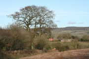Plymtree: towards Wrights Farm