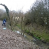 A tributary of the River Mole
