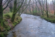 River Yealm from Popple's Bridge