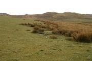 Rough pasture at Druim Scaraba