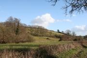 Clyst St Lawrence: near Higher Comberoy Farm