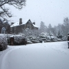 Snow scene - pedestrians only