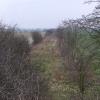 Disused railway track. Ulnaby Lane