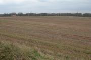 Farmland at Doverdale