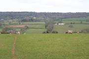Broadhembury: footpath between Dulford and Kerswell