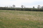 Broadhembury: fields south east of Kerswell