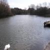 Brinkburn Pond.