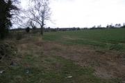 Fields and Motorway