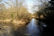 River Itchen between Itchen Abbas and Avington Park