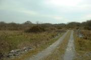Scrubland near Rhostryfan