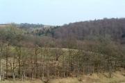 High Wood from Eccup reservoir dam
