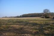 Farmland near Inholmes Court