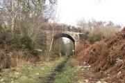 The Ark Bridge
