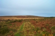 View from Rushlade Common - Dartmoor