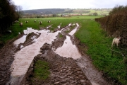Farmland, Broadoak