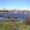 Drinkfield Marsh Nature Reserve.