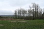 Kentisbeare: east of the village