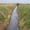 Drainage Dyke Morton Fen