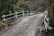 Bridge over Hollocombe Water