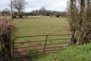Farmland at Westlands, King's Pyon