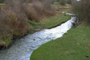 The River Deerness at Esh Winning