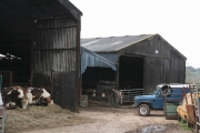 Culmstock: barns south of Nicholashayne