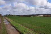 Farmland above Up Nately
