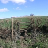 Footpath to Berrington