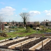 Horfield & District Allotments