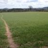 Footpath near Mawfield Farm