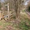 Footpath to Honeymoor Common
