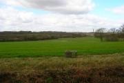 Farmland near Stroodland Barn