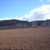 Fields Getting Fertilized, I Think.