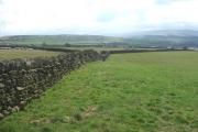 Farmland near Middlebrough House.