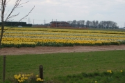 Farming in spring!