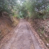 Bridleway between Munstead Heath Road and Catteshall