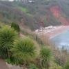 Oddicombe Beach from Babbacombe Downs